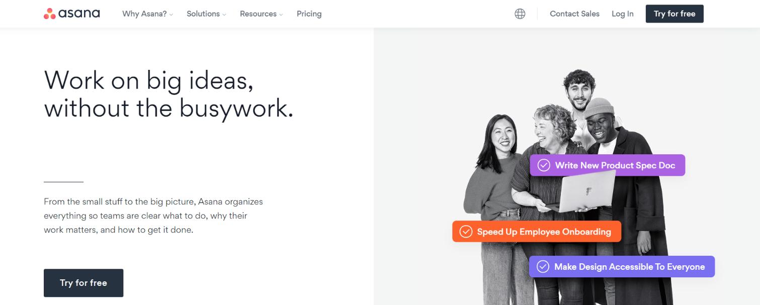 Asana: Team management software
