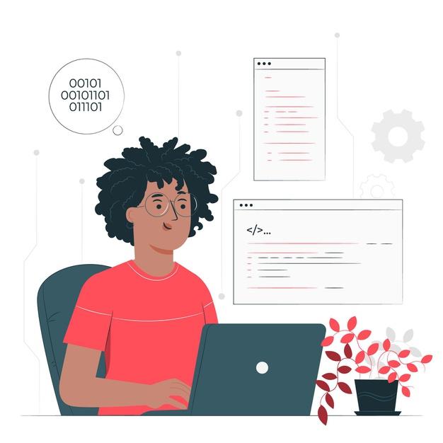 A developer writing a software program