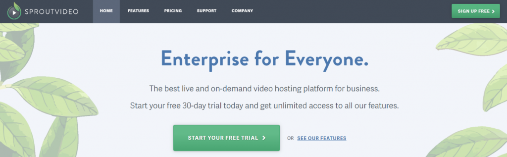Sproutvideo: Video hosting site