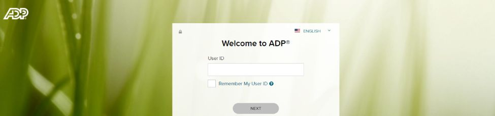 Adp workforce now: Talent management system and software