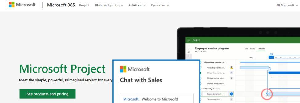 Microsoft Project: Gantt Chart Software